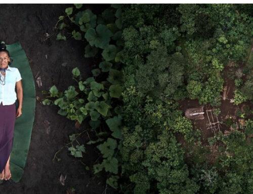 Un uruguayo se llevó el título de Fotógrafo del año para la World Photography Organisation