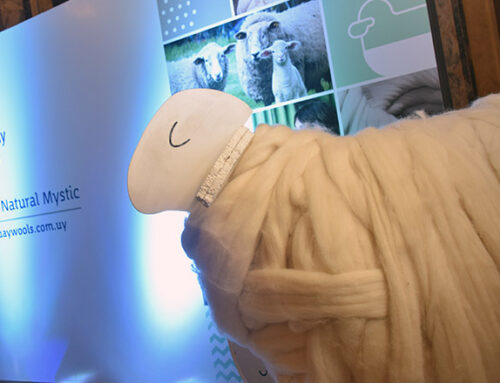 Uruguay XXI launches 'Uruguay Wools' brand for global reach