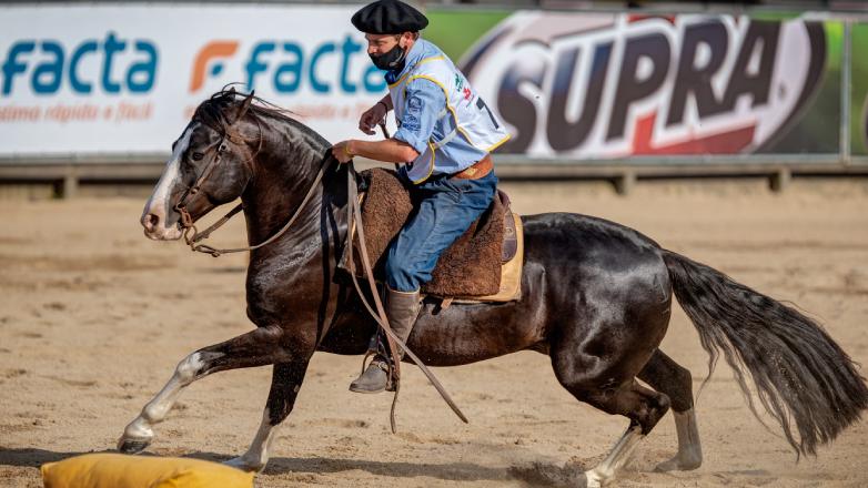 """Otro """"Maracanazo"""" de los caballos Criollos uruguayos"""