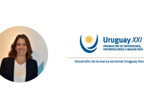 """""""Uruguay tiene una oportunidad única para posicionarse como productor de lana premium"""""""