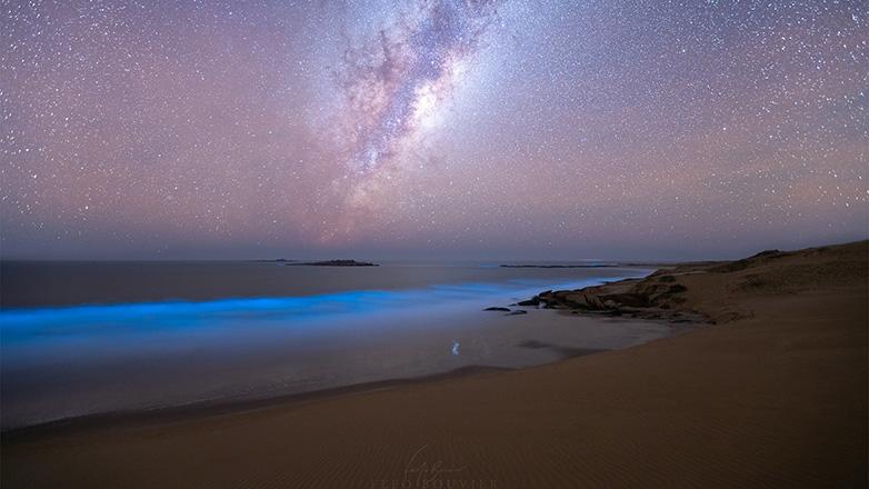 Bioluminescence and the Milky Way at Cerro de la Buena Vista, Rocha