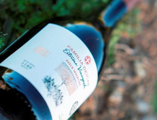 Revista chilena eligió al «Mejor vino tinto de Uruguay» con puntuación histórica