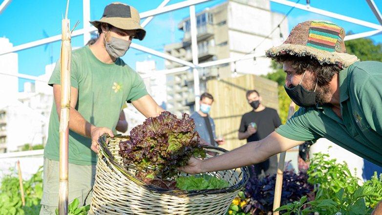 Revolución alimentaria: Sinergia inaugura la huerta urbana más grande de Montevideo