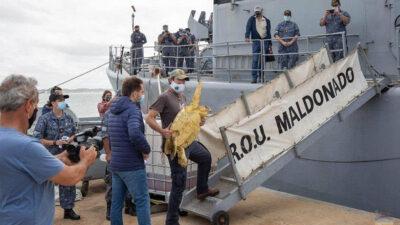 Nat Geo desembarcó en Maldonado y preparan un documental de la fauna marítima; abarca ecoturismo y conservación de áreas protegidas. Foto: s/d de autor