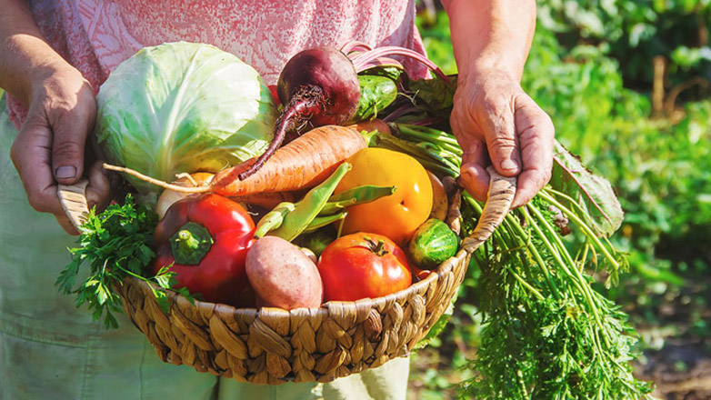 Uruguay lidera el ranking de Seguridad Alimentaria de América Latina y el Cono Sur