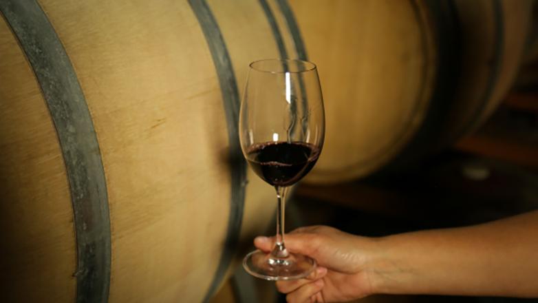 Una semana para brindar por el Tannat, la cepa insignia de nuestros vinos