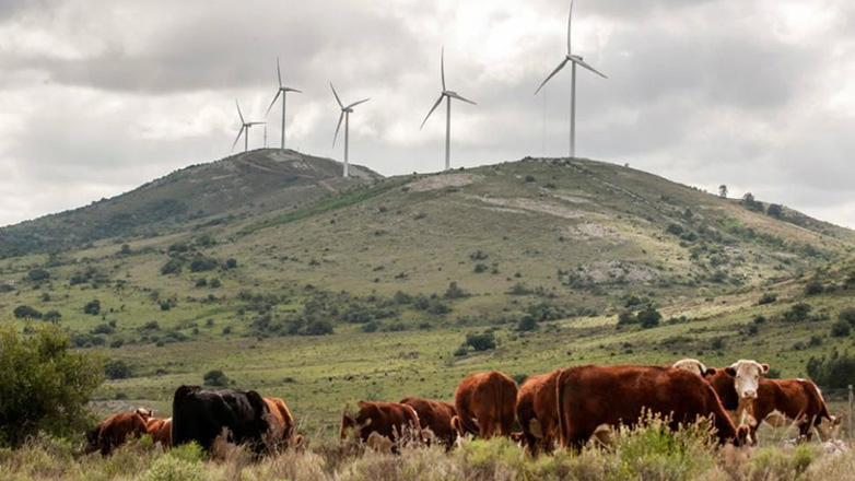 Uruguay tops Latin American transition to environment friendly energy sources
